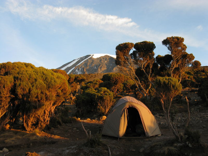"""Rongai route starts from the north of the mountain and is relatively quiet… in 2013 only has 12% of all Kilimanjaro climbers! The Rongai route landscape offers... [themify_button bgcolor=""""green"""" size=""""large"""" link=""""https://trekandhideadventures.com/rongai-route-7-days/"""" style=""""button""""]Read More[/themify_button]"""